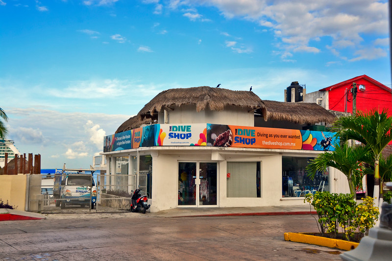 CaribbeanPrincessCruise-Cozumel-12-1-16-SJS-023