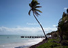 Punta Allen beach-C02511