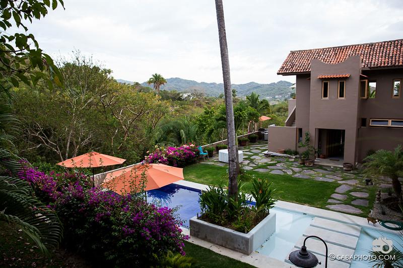 yard, house, jungle