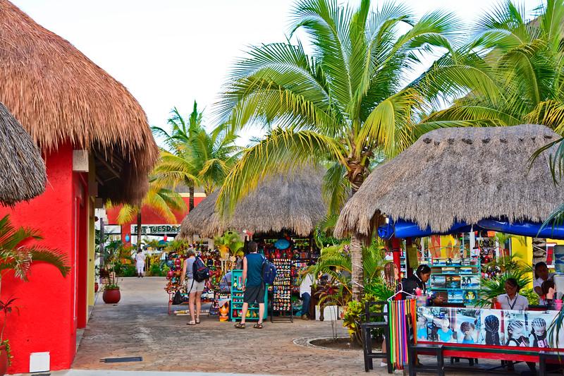 CaribbeanPrincessCruise-Cozumel-12-1-16-SJS-021