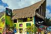 CaribbeanPrincessCruise-Cozumel-12-1-16-SJS-106