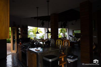 kitchen, living room, jungle