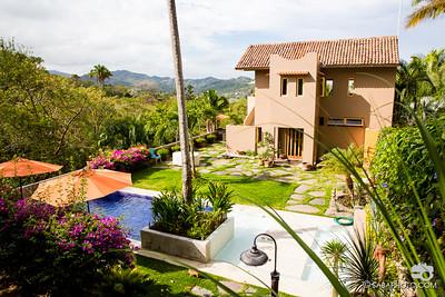 backyard, house, jungle