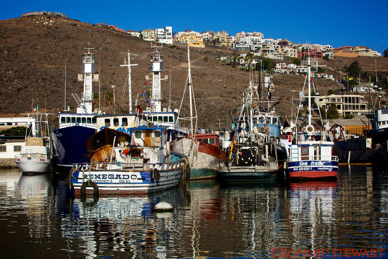 Boats in the Ensenada Marina