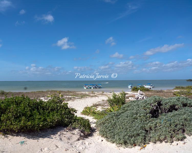 Purta Allen beach-02506