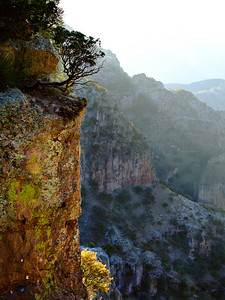 Copper Canyon Light