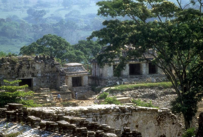 Housing Palenque
