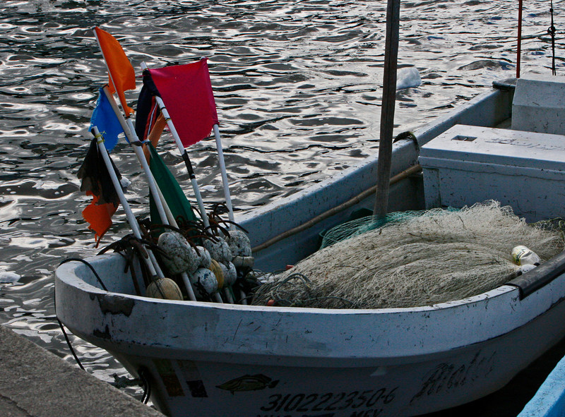 They fish by gill nets for Spanish mackerel, which is exported to Japan.