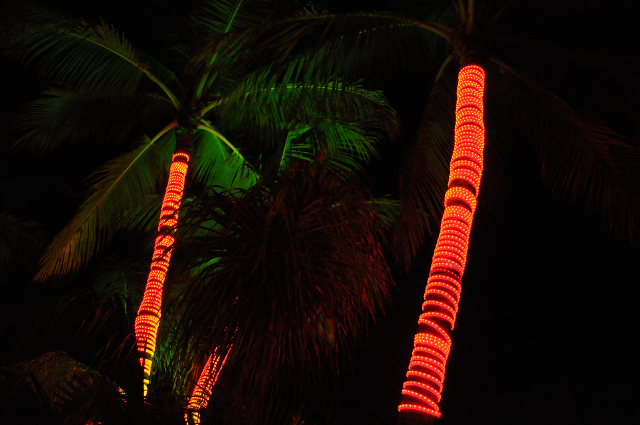 Night time on Ocean Drive, Miami Beach - December 2012