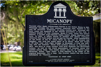 Nine of us from around Tampa Bay area embarked on a photo-walk in Micanopy FL, about 2 1/2 hours from our departure point St. Petersburg FL.
