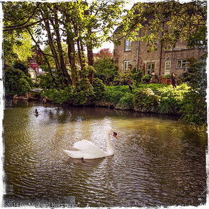 Along the river in Burford (Cotswolds, May 2014)