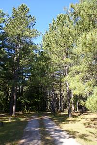 Road through Fox River camp