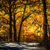 getting lost | glen arbor, michigan