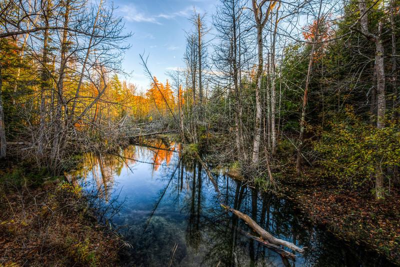 red schoolhouse creek | cedar, michigan