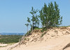 Sleeping Bear Dunes National Lake Shore (5)