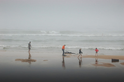 A family explores the Lake Michigan shore on a misty morning at P. J. Hoffmaster State Park