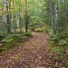 Trail near Thornton Lake