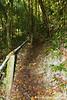 Eli Malk Island Trail