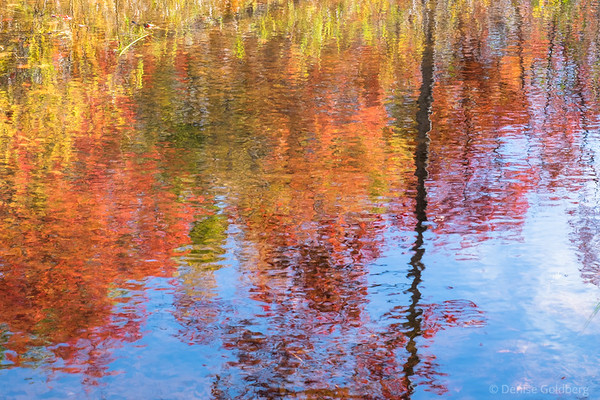 impressionist reflection