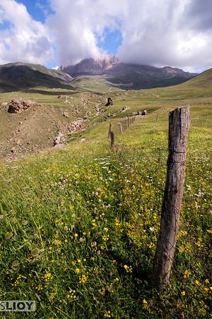 Fields of wildflowers.<br /> <br /> <br /> near Xinaliq, Azerbaijan