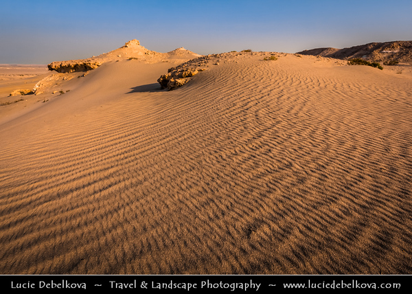 Middle East - GCC - Bahrain - Desert area around Tree of Life - شجرة الحياة - Shajarat al-Hayah - Barren area of Bahraini Arabian Desert
