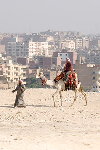 Although the Pyramids look like they're far out in the desert, the Giza plateau is actually very close to the city.