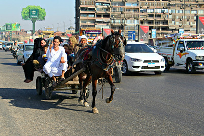 Traditional Family Transport