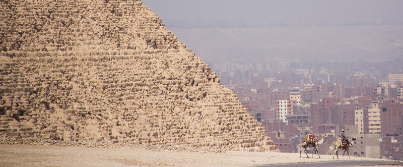 Camels cross in front of the Pyramids at Giza, Egypt with the city of Cairo in the background.