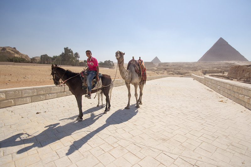 Camel Driver at the Giza Pyramids in Egypt.