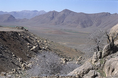 view towards Zagros Mountains