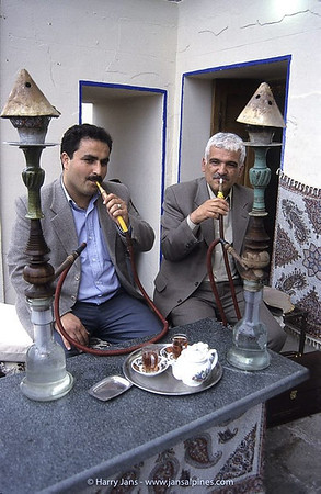 water pipes (qalyan / nargileh)
