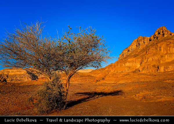 Israel - Eilat - Timna National Park - Beautiful natural desert setting offering incredible view of mountain terrain & range of colors & various rock formations