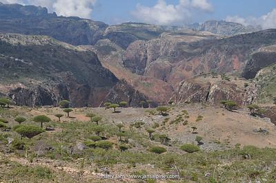 Dixsam plateau