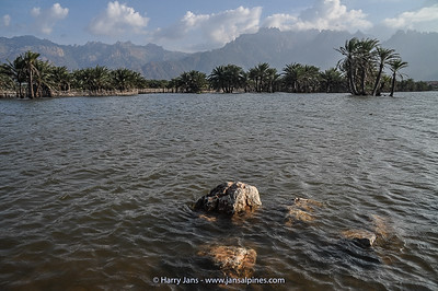 wadi east of Hadibo