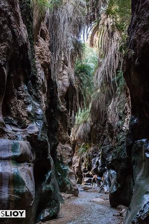 Hiking Wadi Ibn Hammad in the interior of Central Jordan.