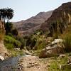 Hiking the Wadi Weida'a Waterfall Trail on Jordan's Dead Sea Coast.