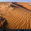 Middle East - GCC - Kuwait - Kuwaiti Desert - Area with sea of sand dunes