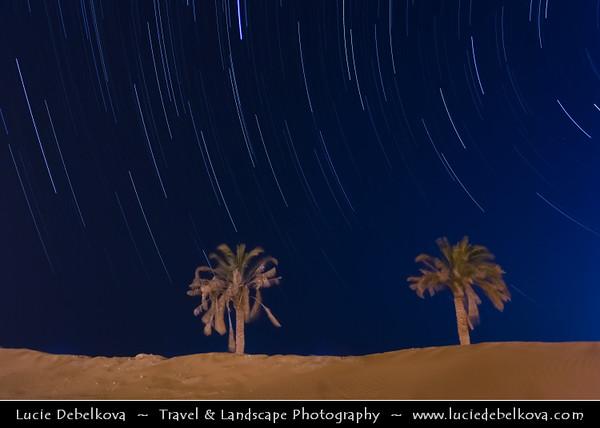 Middle East - GCC - Kuwait - Kuwaiti Desert - Night sky over Two Palm Trees in sea of sand dunes of Arabian Desert - Startrails - Star-trails