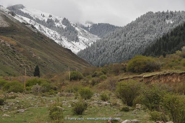 view toward Ashu valley