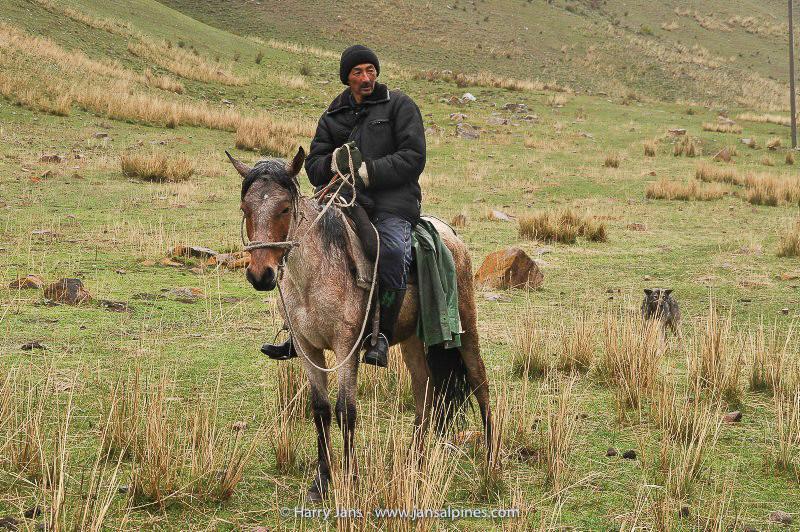 Kyrgyz horseman