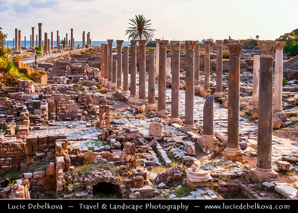 Lebanon - Libnān - Lubnān - Liban - Tyre - Sour - Ancient Phoenician City on shore of Mediterranean Sea - UNESCO World Heritage Site - Phoenician Vestiges - Remains of ancient city at Al Mina excavation site - Main colonnaded street