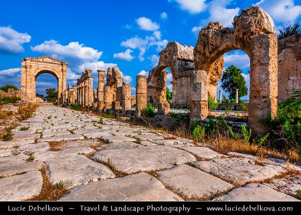 Lebanon - Libnān - Lubnān - Liban - Tyre - Sour - Ancient Phoenician City on shore of Mediterranean Sea - UNESCO World Heritage Site - Phoenician Vestiges - Remains of ancient city at Al Mina excavation site