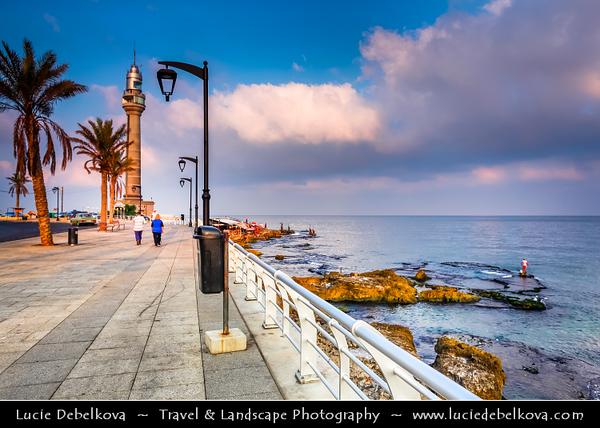 Lebanon - Libnān - Lubnān - Beirut - وت - Bayrūt - Beyrouth - Capital City along the Mediterranean Sea - Morning life along the Corniche - Fisherman catching their morning catch