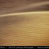 Middle East - Sultanate of Oman - Wahiba Sands - Ramlat al-Wahiba - Sharqiya Sands - Large desert area with beautiful sands dunes