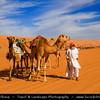Middle East - Sultanate of Oman - Wahiba Sands - Ramlat al-Wahiba - Sharqiya Sands - Large desert area with beautiful sand dunes