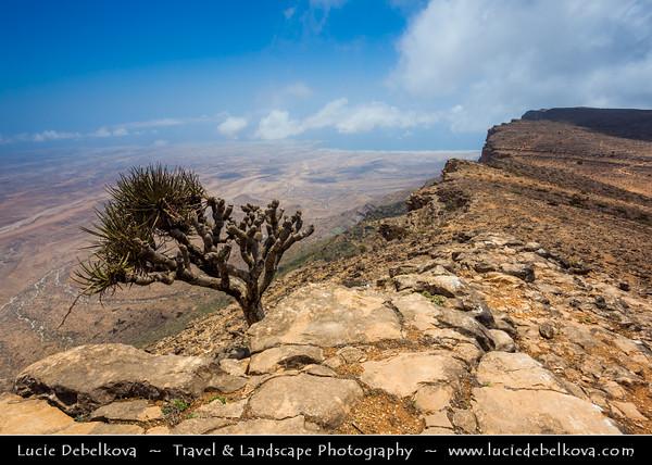 Middle East - Sultanate of Oman - Dhofar Province - Salalah Area - صلالة - Ṣalālah - Scenic coastal location along Indian Ocean surrounded by rugged mountains during Khareef - Rainy Season bringing misty & foggy weather