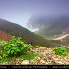 Middle East - Sultanate of Oman - Dhofar Province - Salalah Area - صلالة - Ṣalālah - Al-Mughsayl Beach - Al Maghseel - Mughsail - Maghsail - Scenic coastal location along Indian Ocean surrounded by rugged mountains during Khareef - Rainy Season bringing misty & foggy weather