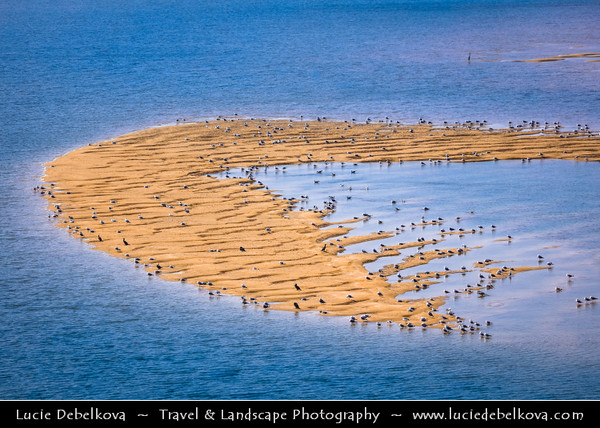 Middle East - Sultanate of Oman - Ash Sharqiyah Region - Sur - صور - One of ancient Omani maritime cities & important destination point for sailors on coast of Gulf of Oman - Ayjah sandy lagoon during low tide