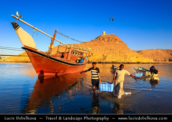 Middle East - Sultanate of Oman - Ash Sharqiyah Region - Sur - صور‎ - One of the ancient Omani maritime cities & important destination point for sailors on coast of Gulf of Oman - Al Ayjah Bay area with traditional dhows/boats