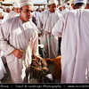 Middle East - Sultanate of Oman - Ad Dakhiliyah Region - Nizwa - نزوى - Historical town - One of oldest cities in Oman - Nizwa Souk & Friday Cattle Market where hundreds of traditionally dressed locals come to trade goats, cows and other livestock